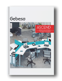 ascend-catalog